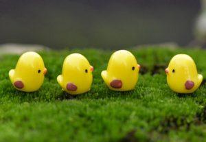 Bài thơ Mười quả trứng tròn (Đàn gà con)